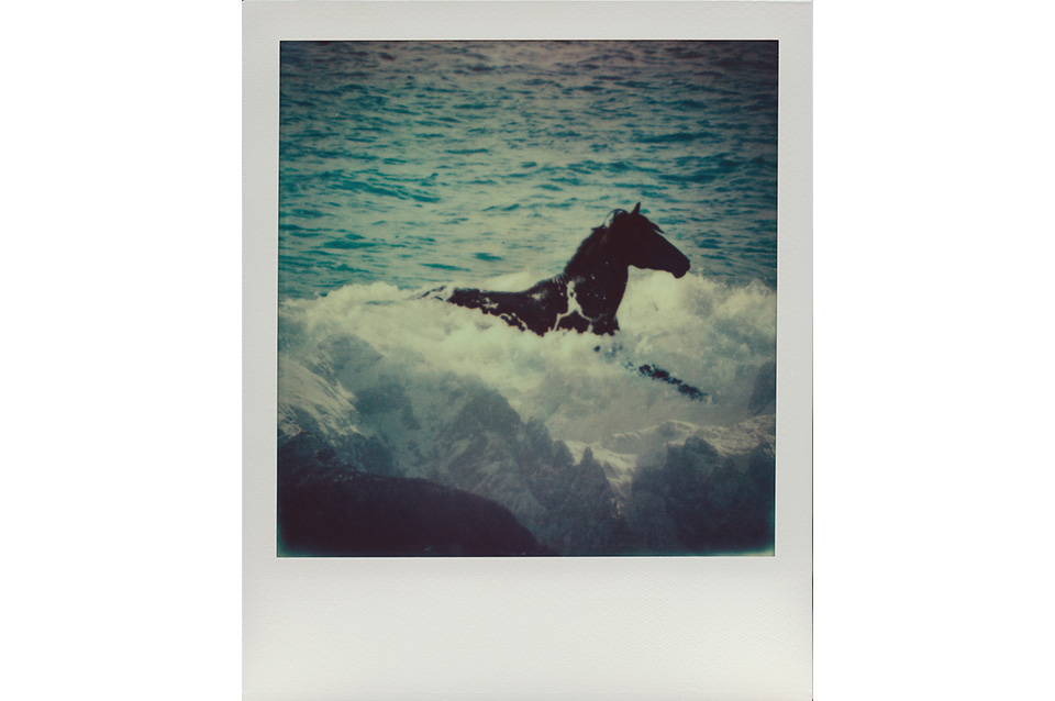 JakobLang_ArtIsNotImpossible_Polaroid_HorseInWave_2014